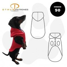 Neko Cat, Dog Shop, Sewing, Pets, Charlotte, Character, Shopping, Pet Clothes, Dog Clothing