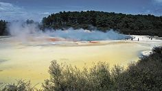 Steaming mud pool in Rotorua, New Zealand. Picture: Bruce Elder