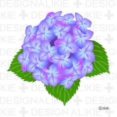 Hydrangea Flower Pictures Of Clipart And Graphic Design And