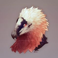 turtlenecks and twiddles — drew my favorite bird, the bearded vulture these. Creature Drawings, Animal Drawings, Cool Drawings, Drawing Sketches, Dragon Bird, Alien Art, Artwork Images, Furry Drawing, Creature Design