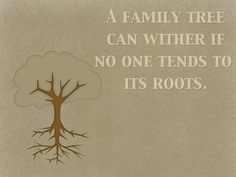 """Quotes: """"A family tree can wither if no one tends to its roots."""" #quotes #genealogy"""