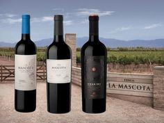 Nace #Mascota #Vineyards, la marca de #vinos de autor del Grupo Peñaflor (ecocuyo.com)