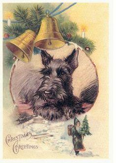 SCOTTISH TERRIER SNOWMEN SCOTTIE DOG SINGLE DOG PRINT GREETING CHRISTMAS CARD