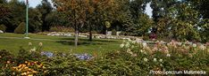 Winnipeg Visitor Tips Trans Canada Highway, The Province, Day Tours, Dolores Park, Gardens, Tips, Travel, Viajes, Outdoor Gardens