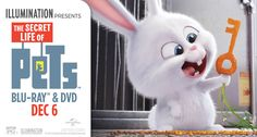 The Secret Life Of Pets on Blu-ray and DVD Today!!! (plus giveaway) #TheSecretLifeOfPets #PetsPack