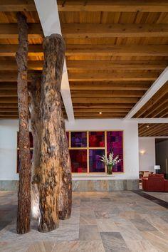 Una casa mágica entre árboles https://www.homify.com.mx/libros_de_ideas/38245/una-casa-magica-entre-arboles