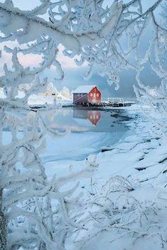 Trondheimsfjorden, Norway … by haarbergphoto