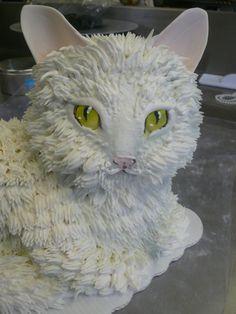cat_cake