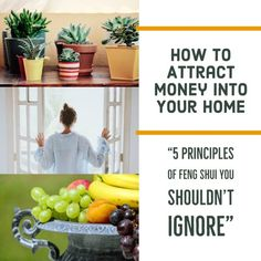 Five easy home decor fundamentals you should be doing to attract money into your home. Change your stuff, change your thoughts, change your results today. #fengshui #money #homedecor #wealth #cleaning #funkthishouse
