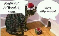 Weihnachten lustig… Christmas funny witty sayings image images. really, I'm Santa Xmas Pictures, Funny Animal Pictures, Xmas Pics, Crazy Cat Lady, Crazy Cats, New Memes, Funny Memes, Animals And Pets, Funny Animals