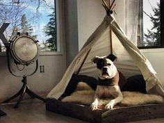 Hundebett selber bauen: 13 gemütliche Ideen für Ihren Vierbeiner - Heimwerkertricks.net