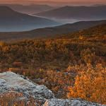 Dolly Sods Wilderness Autumn Sunrise West Virginia