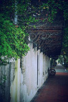 Photo by Amy Larson Downtown Savannah, Savannah Chat, Amy