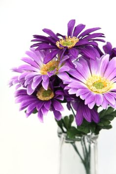 14 Daisy Bush in Shades of Purple  8 Daisies per by simplyserra, $5.50