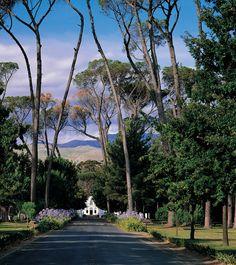 Boschendal wine estate | Franschhoek, Western Cape, South Africa
