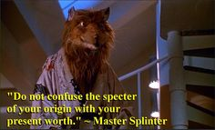 Ninja Turtles - Master Splinter quote