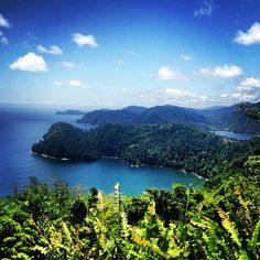 ♥  North Coast, Trinidad | The Most Beautiful Place In The World