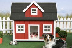 niche pour chiens en plastique rouge et gris