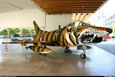 Fiat G-91 R from the Portuguese Air Force. Photo courtesy of José Jorge. credit:on-the-step.com/aircraft-nose-art
