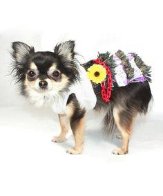Look what I found on #zulily! White Daisy Denim Mini Dog Dress #zulilyfinds