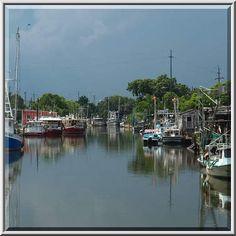 Bayou la Loutre between Alluvial City and...Rd. 624, St.Bernard Parish. Louisiana