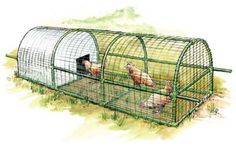 Build this predator-proof, portable chicken coop for your backyard. This new and improved incarnation of the portable chicken coop is designed for three to four chickens, and anybody can build it. From MOTHER EARTH NEWS magazine.