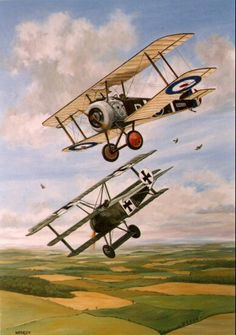 Kurt Wolff (biplanes, airplanes, flying, sky, fields)