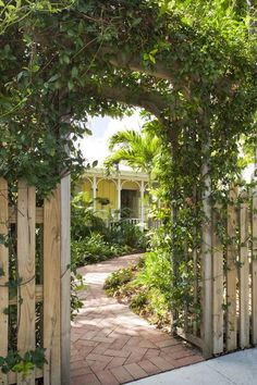 """I spent hours tooling around the internet looking for arched arbors for the entrance to the front yard. I found this one for cheap (it's called """"Rosewood Arbor"""" and is sold by many vendors). Then I added a confederate jasmine vine for texture (and it smells WONDERFUL)."""