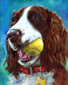 English Springer Spaniel Art Dog Print of Original Painting by Dottie Dracos, Liver Springer with Tennis Ball Cross Paintings, Dog Paintings, Small Paintings, Original Paintings, Acrylic Paintings, Chien Springer, Diamond Picture, Spaniel Puppies, Cocker Spaniel