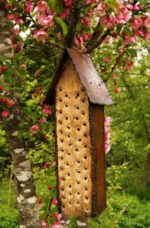 Mason Bees are non aggressive, natural pollinators and play an important role in agriculture by improving productivity. They are solitary i. Amazing Gardens, Beautiful Gardens, Fireplace Frame, Bee Hive Plans, Bug Hotel, Mason Bees, Bee House, Metal Garden Art, Garden Whimsy