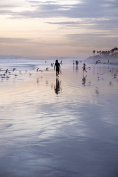 File under 'Reasons to love #California' -- AFAR.com Highlight: Into Liquid by Colin Roohan