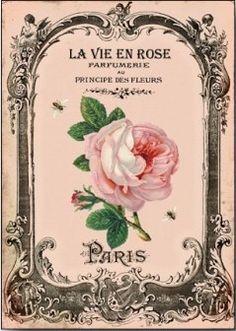 """La Vie En Rose"" ~ Vintage perfume label"