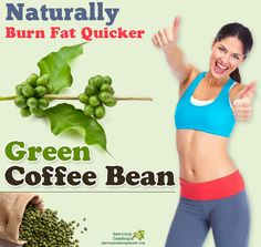 Diet plans to lose weight fast free