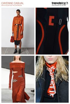 women-s-runway-key-color-report-f-w-2015-cayenne_casual