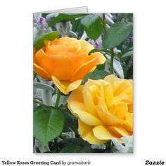 Yellow Roses Greeting Card - for rose collectors