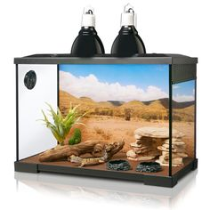 Grreat Choice Reptile Starter Kit Animals Reptile Terrarium