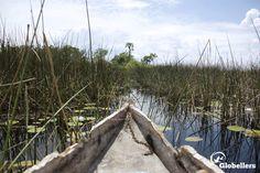 Postal desde delta del Okavango.