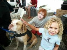 Please crosspost: there has been a recent push to pass BSL against PB's in Gainesville GA. This reporter (https://www.facebook.com/TimesAaronHale) is writing a story about PB's in the area. Stubby's Heroes is calling all PB parents to write simply I am a Pit Bull owner or advocate or something along that line on his wall. Please do not make it long, please be respectful and please, remember, we must educate, not isolate.