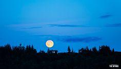 In Deep - Alaska's Kenai Peninsula