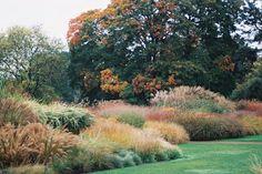 Photos by H: Glorious Autumn Colours Kew 20.1012