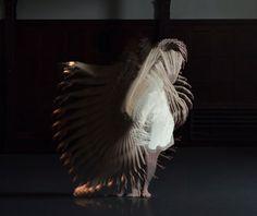 Choros: A Transfixing Experimental Dance Film by Michael Langan & Terah Maher video art dance Movement Photography, Film Photography, Image Doc, Eadweard Muybridge, Photo Sequence, Dance Movement, Body Movement, Experimental Photography, Colossal Art