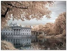 Image result for infrared photography