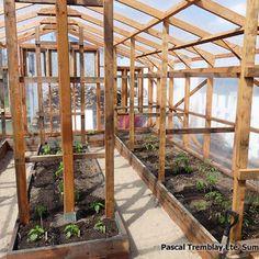 Garden Greenhouse - Indoor Design & Layout Ideas