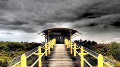 St-Kilda Mangrove Reserve