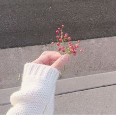 📷 Photography 🧡 Hands and Fingers 👌 Flower Aesthetic, White Aesthetic, Aesthetic Photo, Aesthetic Girl, Aesthetic Pictures, Hand Photography, Tumblr Photography, Beautiful Hands, Beautiful Flowers
