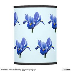 Blue Iris recticulata Lamp Shade This floral design features a flower of the Iris Recticulata family - it is native to Russia, and northern Iran, but cultivated widely throughout Europe.  The recticulata group of irises is characterised by a fibrous net surrounding the bulb. Important: The background color be customized to suit your preferences before placing your order
