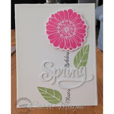 Serendipity Stamps Summer Flower Pops Detailed and Solid Stamps and Dies and Seasons Dies