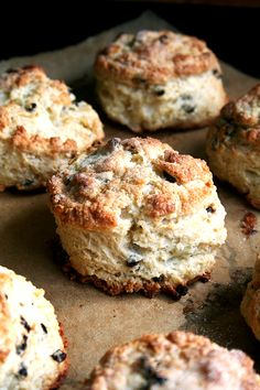 Buttermilk currant scones with lemon cream