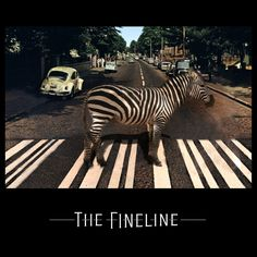Abbey Road The Fineline Abbey Road, Photos, Animals, Pictures, Animales, Animaux, Animal, Animais