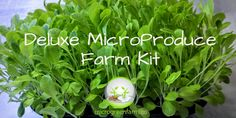 When people think of farming and produce they immediately see either large mono crop farming operations of specialized small farmers with skills far out of reach for most. We through our MicroFarming...